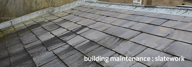 Building Maintenance : Slatework